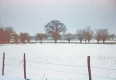 Snow at Thorpe Abbotts